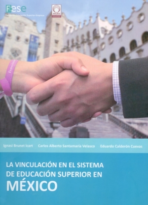 Linking on Higher Education System of Mexico